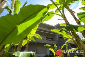 Hotelová zeleň