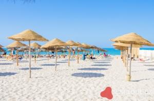 Pláž se slunečníky